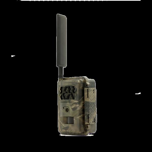 Seissiger Special-Cam LTE - SUPERSIM-Edition (Funk-Wildkamera)